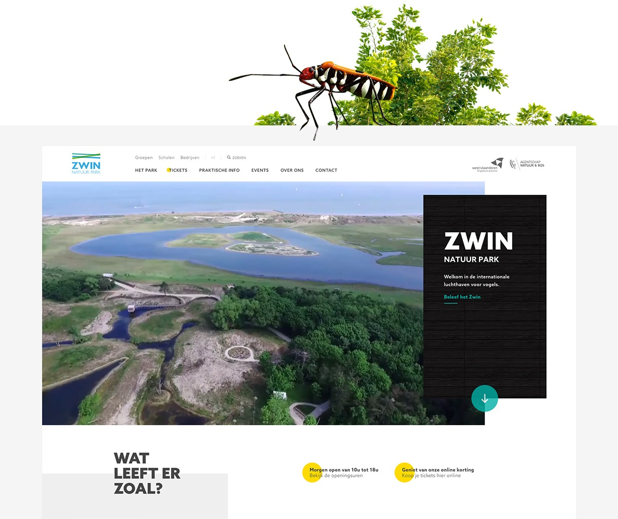 Zwin website homepagina